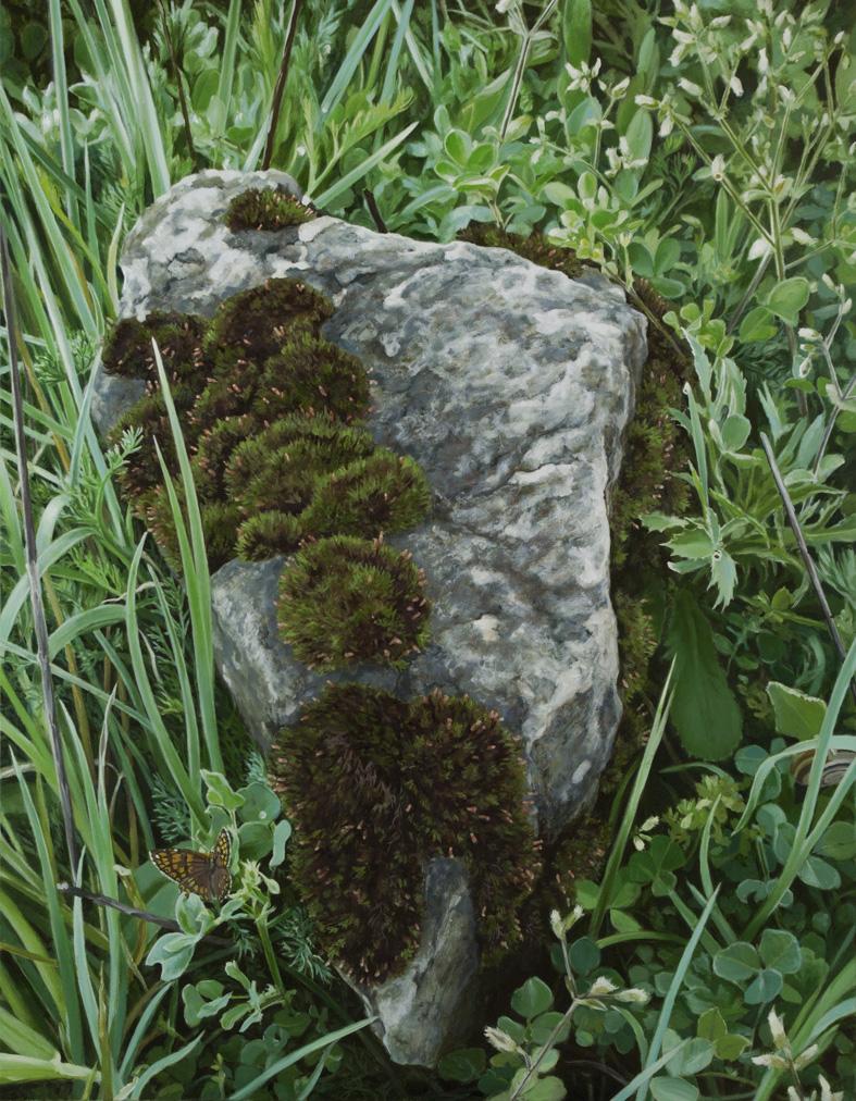 Piedra musgosa